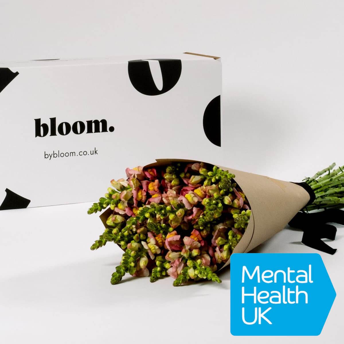 Bloom Flower Delivery | Coral Snapdragons