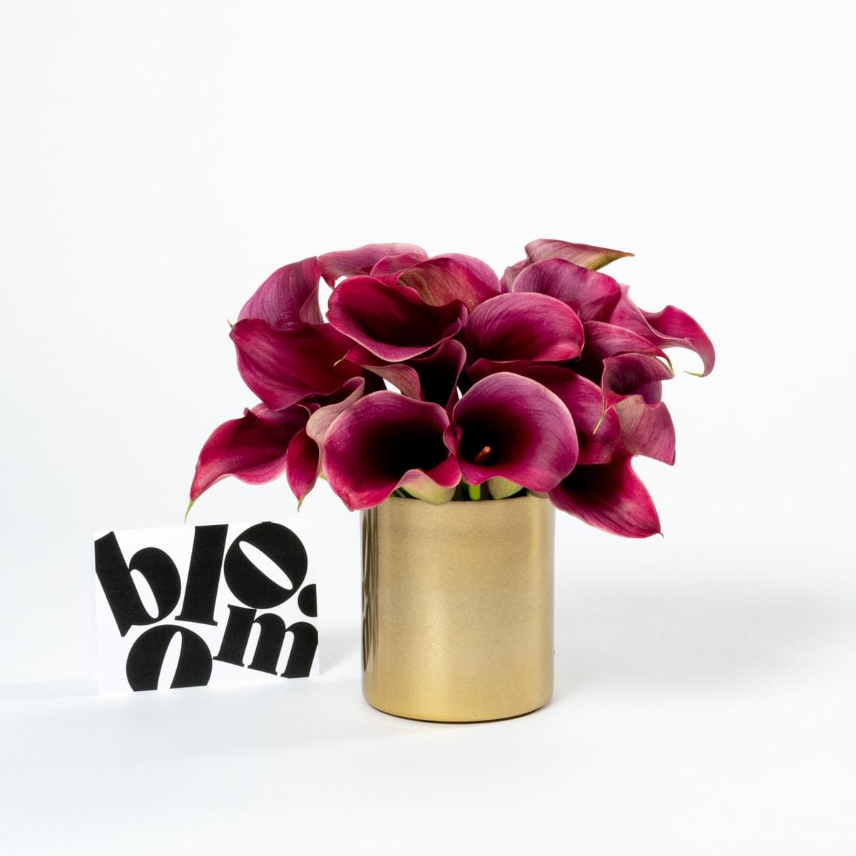 bloom - Brass Plant Pot & Vase