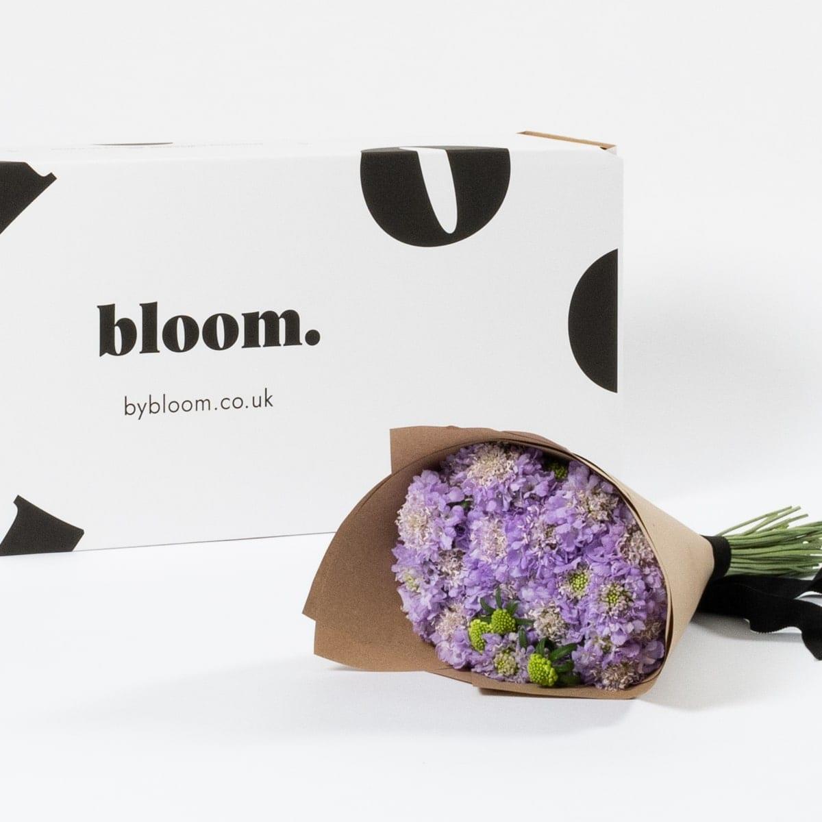 Bloom Flower Delivery | Lavender Purple Scabiosa