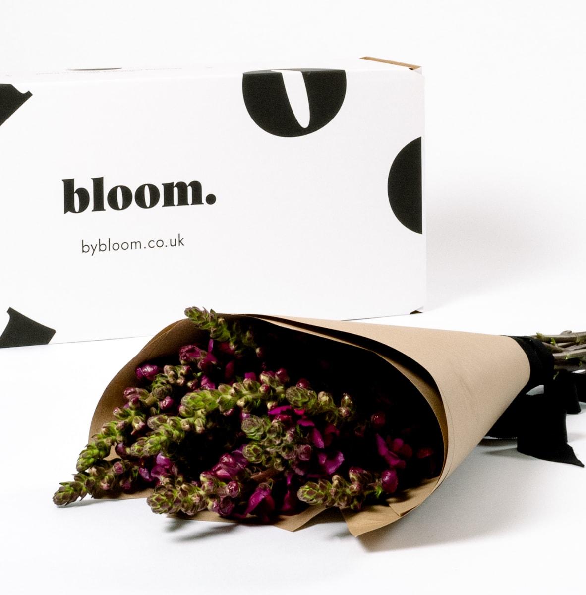 Bloom Flower Delivery | Merlot Red Snapdragons