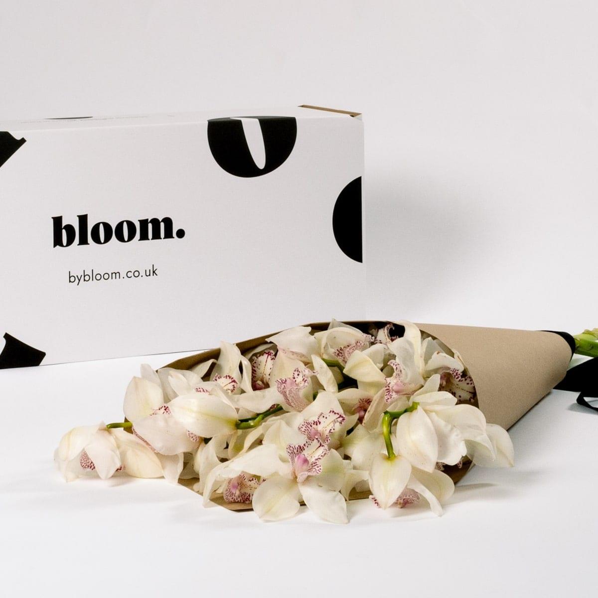 Bloom Flower Delivery | Porcelain White Cymbidium