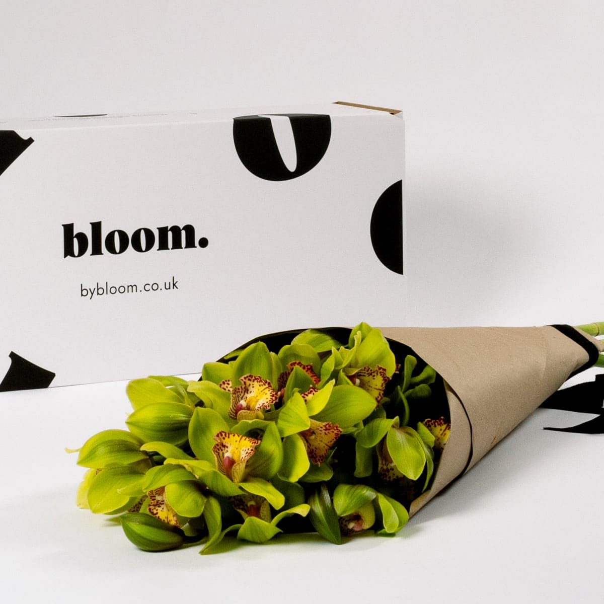 Bloom Flower Delivery | Chartreuse Green Cymbidium