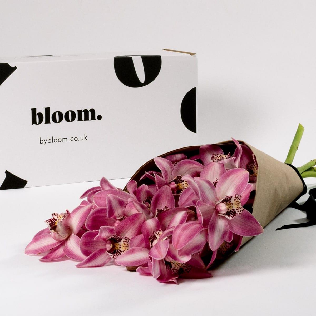 Bloom Flower Delivery | Dusky Rose Pink Cymbidium