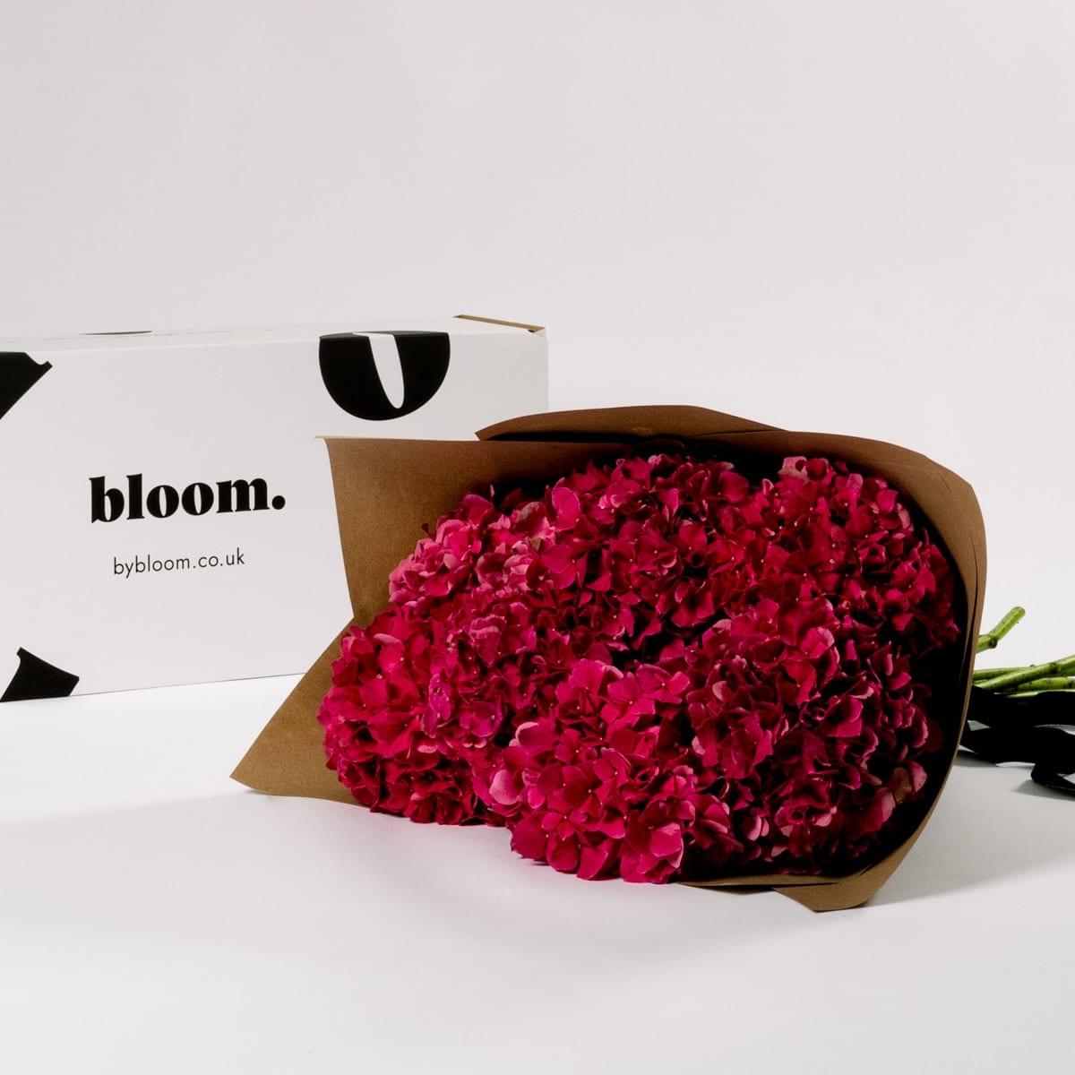 Bloom Flower Delivery   Raspberry Red Hydrangea