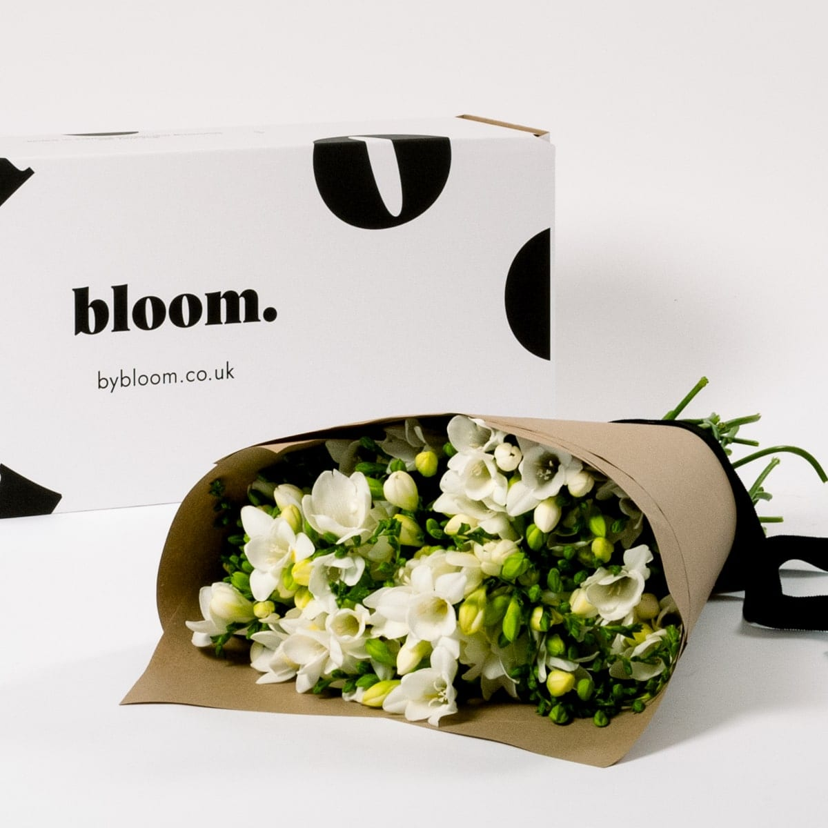 Bloom Flower Delivery | Arctic White Freesia