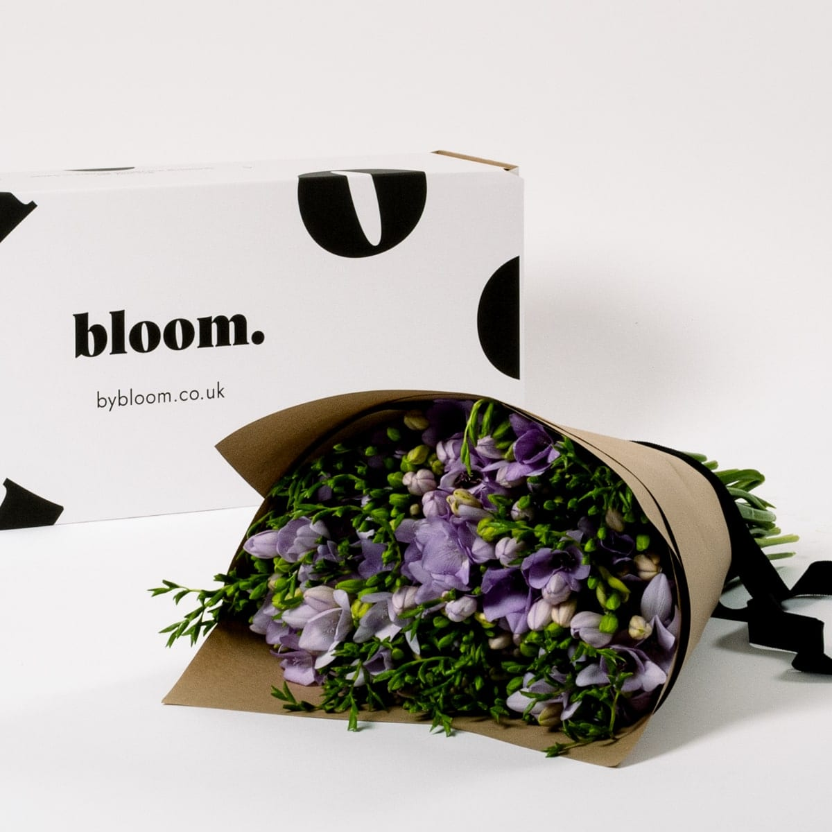 Bloom Flower Delivery | Violet Dust Freesia