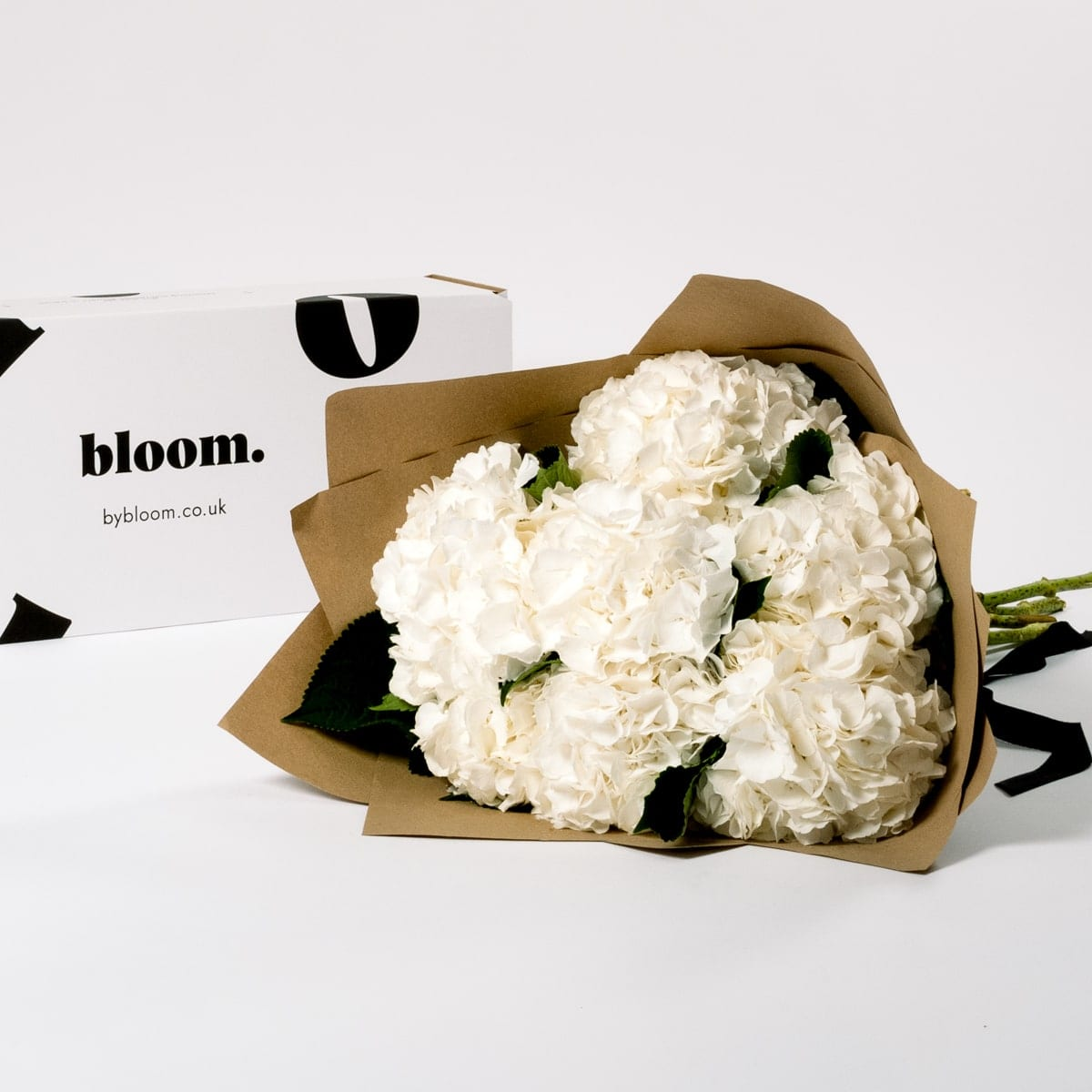 Bloom Flower Delivery   Cloud White Hydrangea