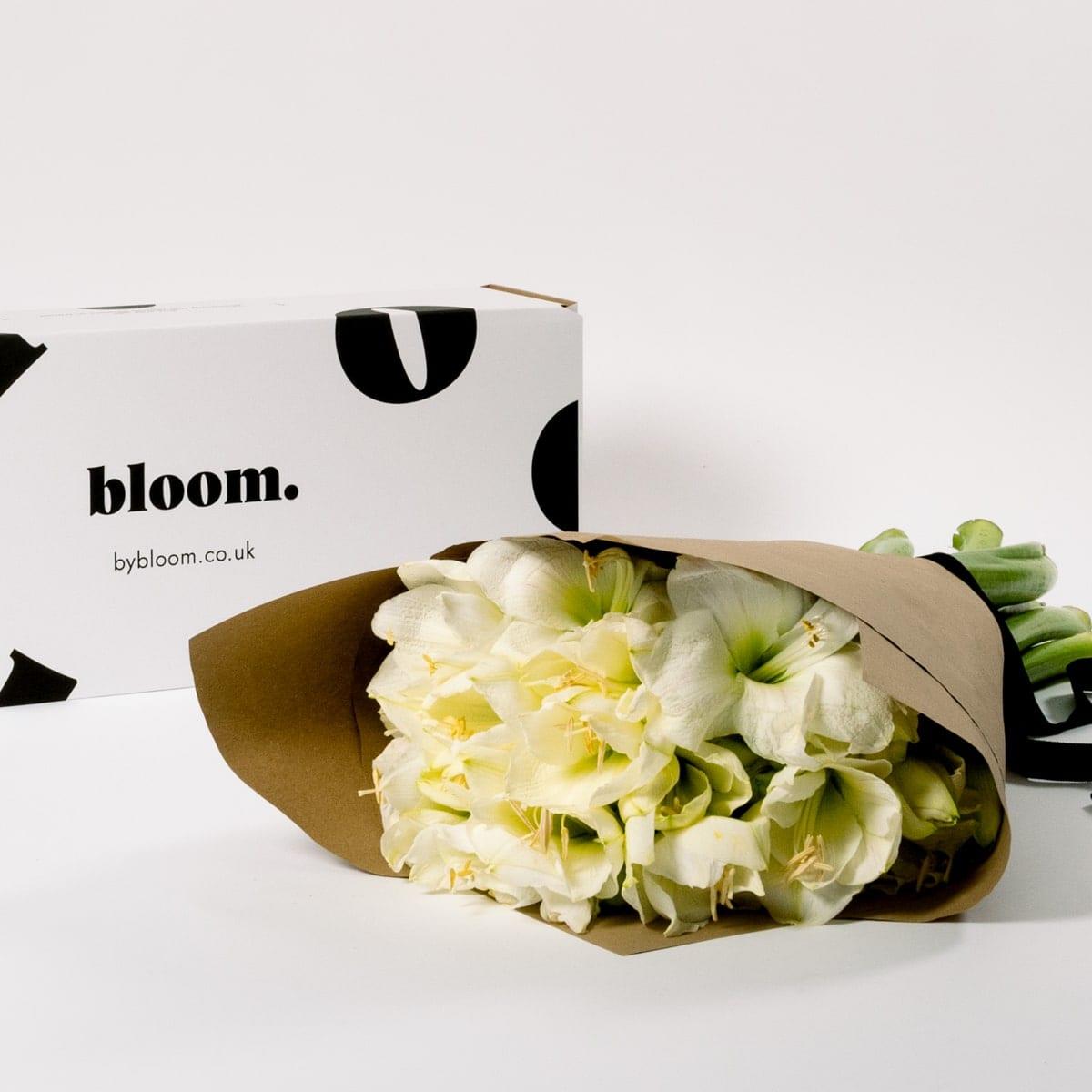 Bloom Flower Delivery | Polar White Amaryllis