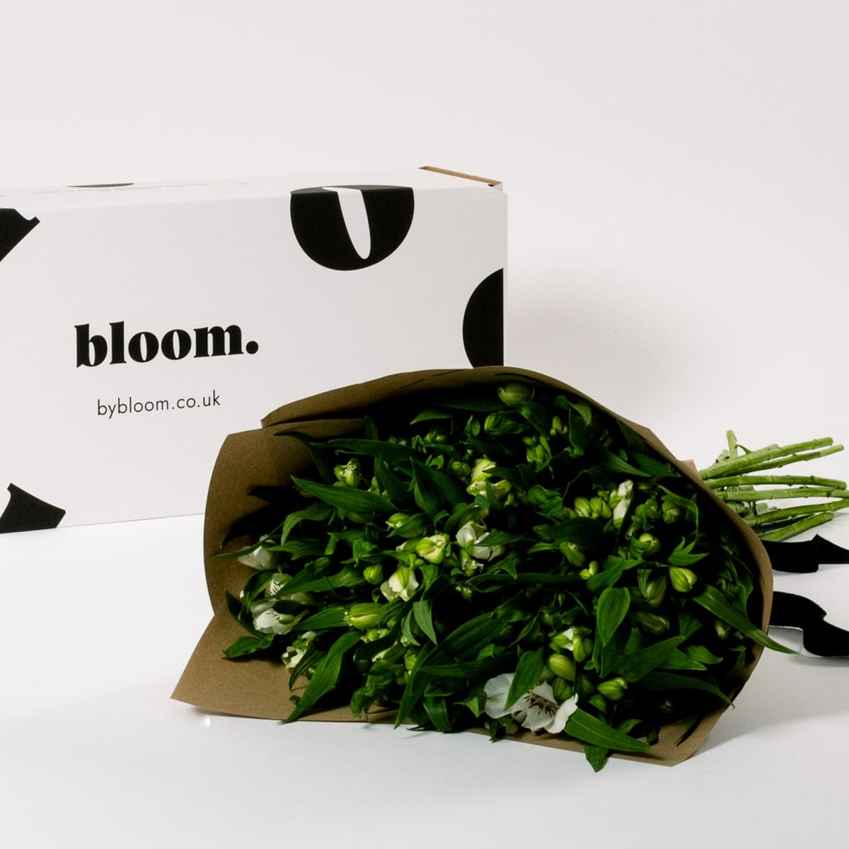 Bloom Flower Delivery | Arctic White Alstroemeria