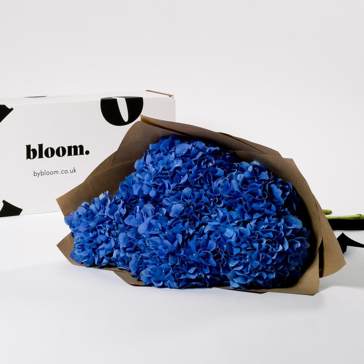 Bloom Flower Delivery   Ultra Marine Blue Hydrangea