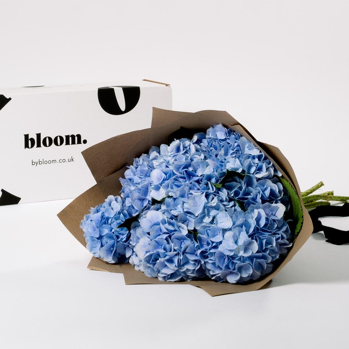 Bloom Flower Delivery   Powder Blue Hydrangea