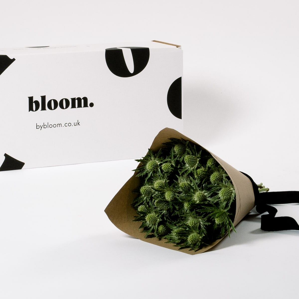 Bloom Flower Delivery | Green Star Thistle