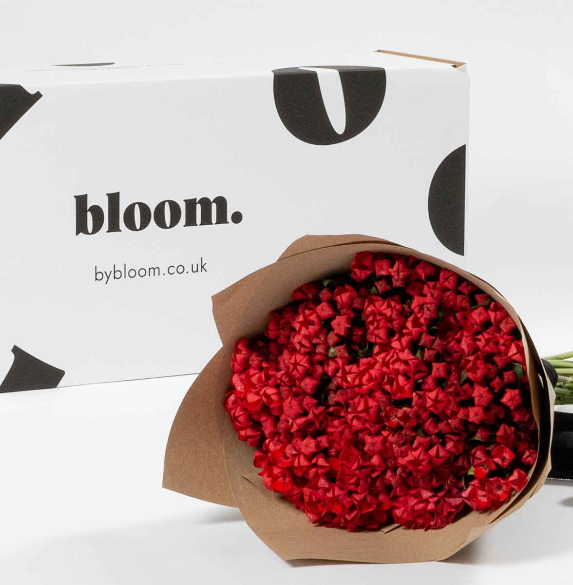 Bloom Flower Delivery | Royal Red Bouvardia