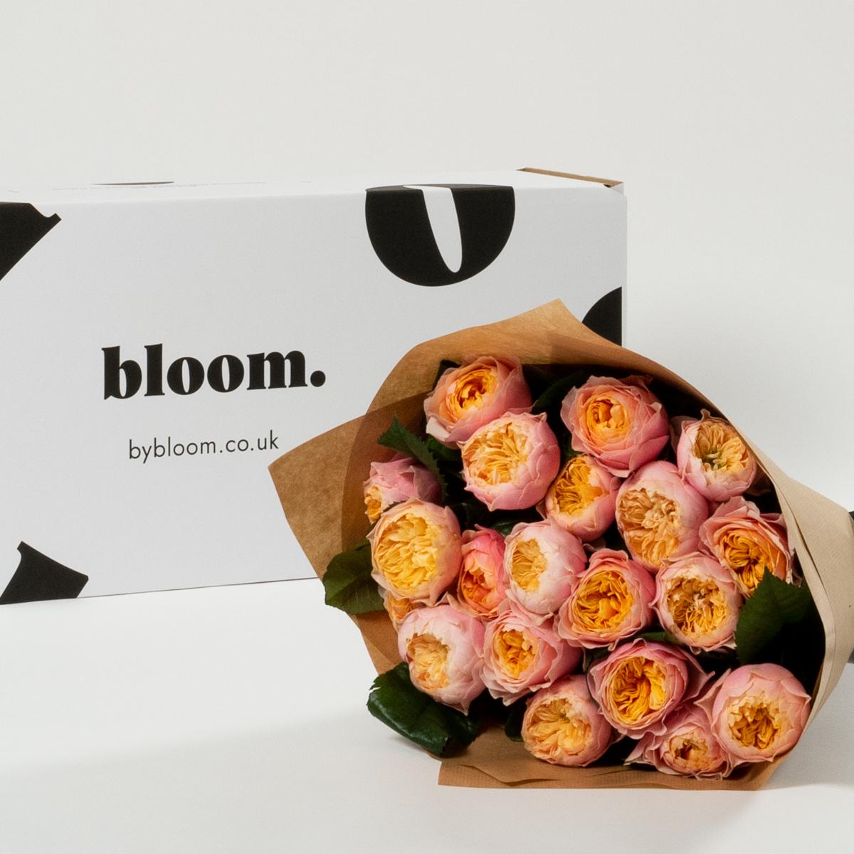 Bloom Flower Delivery | Blush Pink Vuvuzela Roses