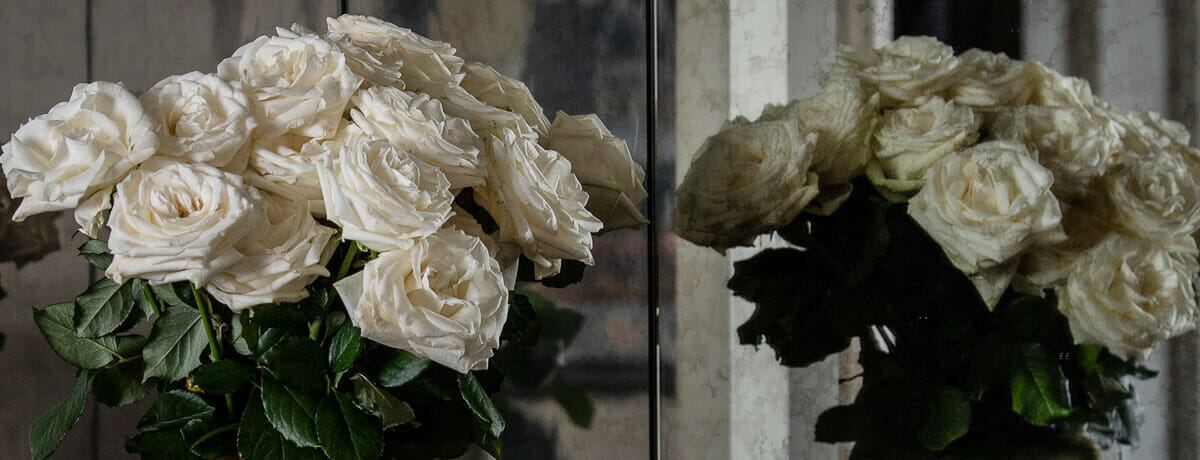Roses - Send cut to order, luxury peony flowers direct from the growers and delivered by UK's first online florist to be entirely sustainable and 100% plastic-free.