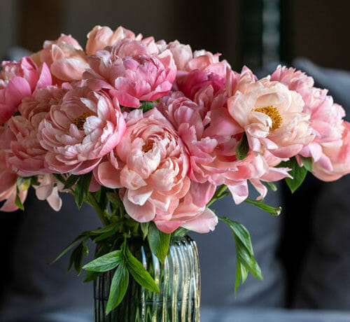 market flowers - Send cut to order, luxury peony flowers direct from the growers and delivered by UK's first online florist to be entirely sustainable and 100% plastic-free.